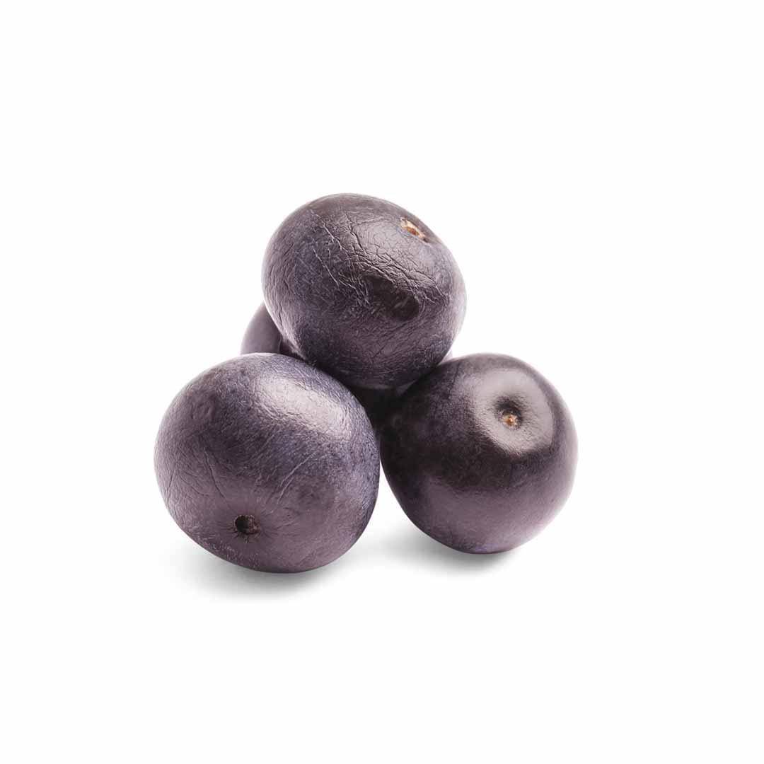 hushhush-plant-your-day-koostis-acai-marja-ekstrakt